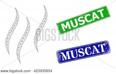 Polygonal Aroma Image, And Muscat Blue And Green Rectangle Rubber Stamp Seals. Mesh Carcass Image Is