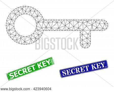Net Key Image, And Secret Key Blue And Green Rectangular Rubber Stamp Seals. Polygonal Carcass Image