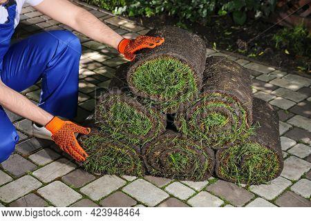 Gardener With Grass Sod Rolls On Backyard, Closeup