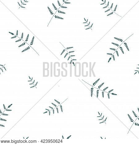 Seamless Minimalistic Abstract Natural Pattern. Branches With Fern Leaves, Plants On A White Backgro