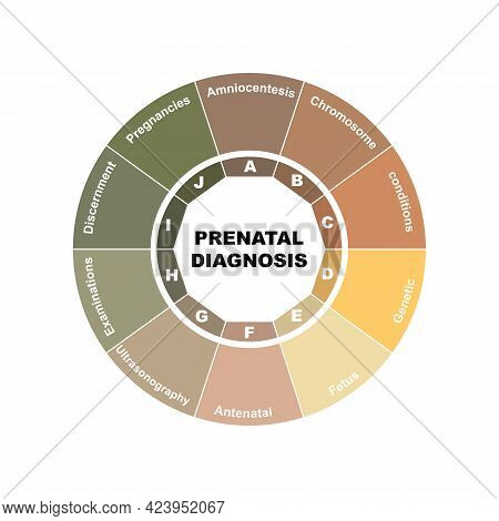 Diagram Concept With Prenatal Diagnosis Text And Keywords. Eps 10 Isolated On White Background