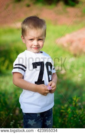 Little Boy Of Two Years Old Posing And Looking At The Camera On Nature In Summer.