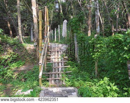 Bamboo Bridge In A Green Park. Kochi, Kerala, India