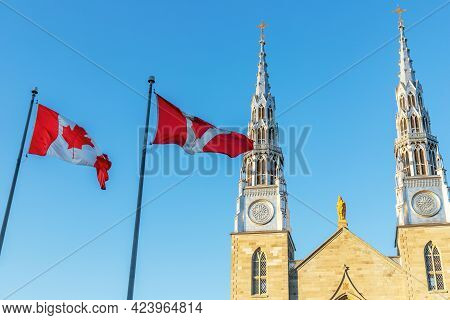 Canadian Flags In Front Of The Notre-dame Cathedral Basilica In Ottawa, Canada On A Sunny Day Agains