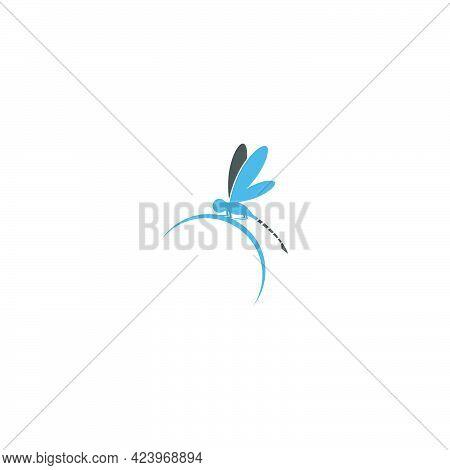 Dragonfly Logo Icon Design Concept Template Illustration
