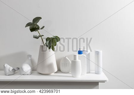 Figurines Of A Bird Are On The Surface Of The Chest Of Drawers. A Vase With A Eucalyptus Branch, Pla