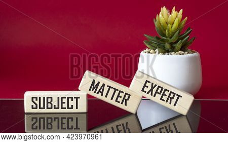 Wooden Blocks With The Inscription Subject, Matter, Expert. Black And Red Background With Cactus Flo