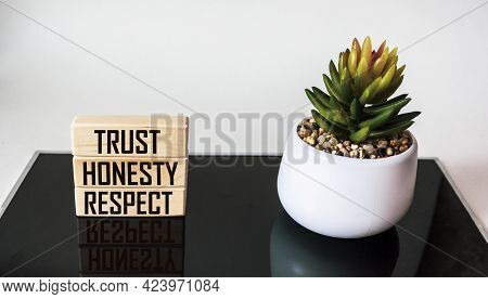 Trust, Honesty, Respect - Separate Words On Wooden And Black And White Background With Cactus Near
