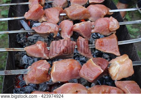 Shashlik. Meat Is Cooked On Skewers On Coals. The Cooking Process. Picnic
