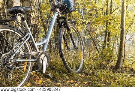 A Walking Bike Stands Near A Tree In A Park In Early Autumn Afternoon. Healthy Lifestyle, Active Lei