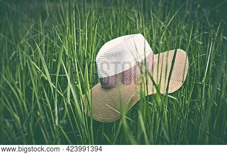 Vintage Sun Hut in green grass. Copy space