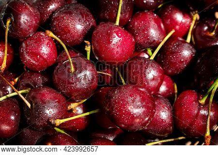 Ripe Red Sweet Cherries, Summer Berries Background