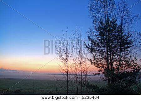 Misty Morning (hdr Photo)