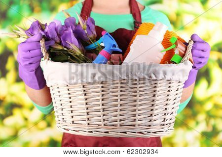 Housewife holding basket with cleaning equipment on bright background. Conceptual photo of spring cleaning.  poster