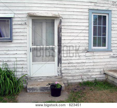 Whitewashed House
