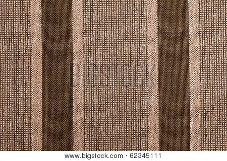 Variable Colors Of Brown Strings And Light Brown Fur
