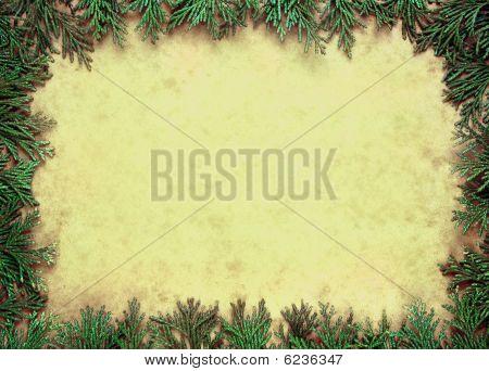 Cypress frame
