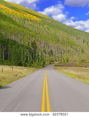 Touring America in Autumn Foliage: Aspen in Fall colors