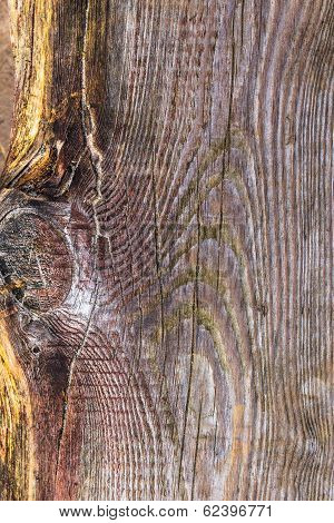 Rough Wooden Plank Visible Discoloration Knots