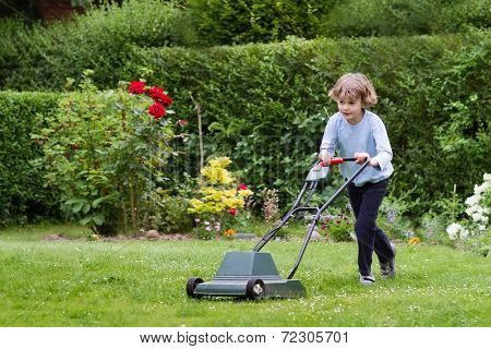 Little Boy Playing With A Lawn Mower In The Garden poster