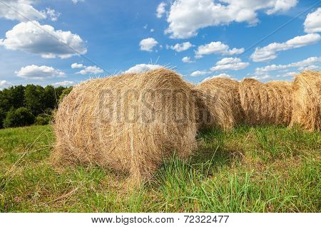 Golden Hay Bales On Field Under Blue Sky In Summer Day