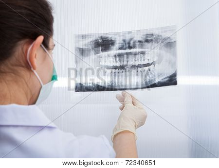 Female Dentist Looking At Dental Xray