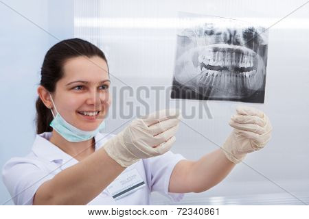 Dentist Examining Xray