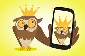 Crazy owl is doing selfie for social networks poster
