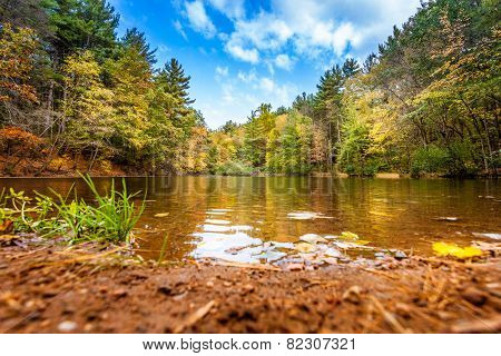 Relaxing Shore Of Small Pond In Fall