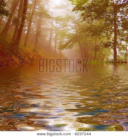 landscape fog
