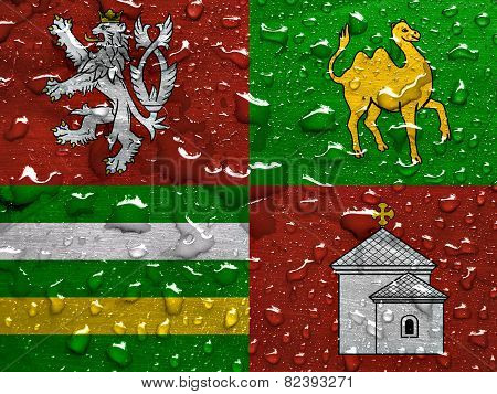 flag of Plzen Region with rain drops poster