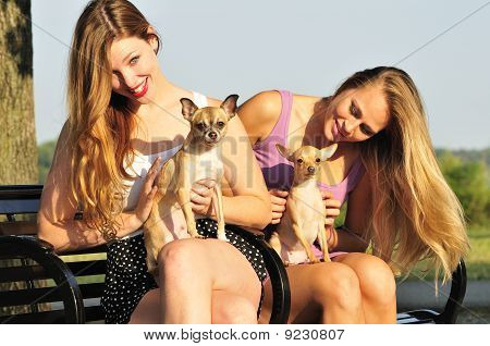 two pretty young women playing with cute Chiwawa puppies in the park poster