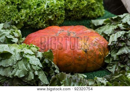 Ripe Pumpkin for sale in a greengrocery