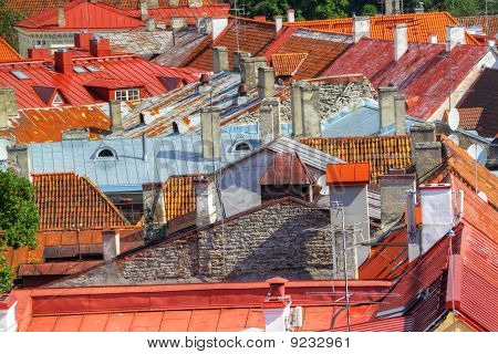 Old Red Roofs