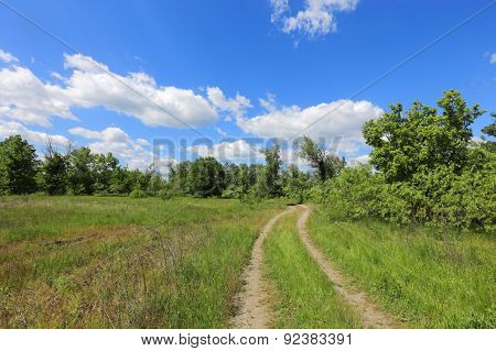 rut road in steppe at a nice summer day
