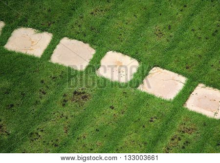 Top view of mown grass with a stone path