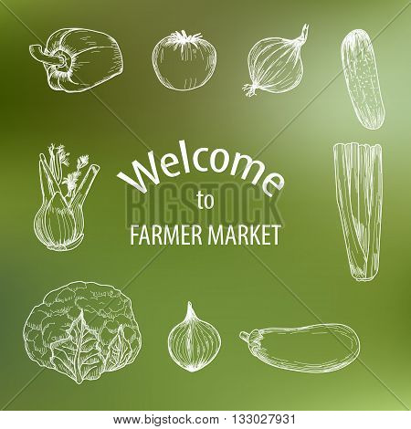 Organic food concept brochure and flyer template. Vector illustration