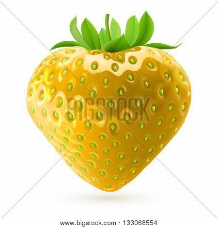 Realistic illustration of yellow strawberry on white background