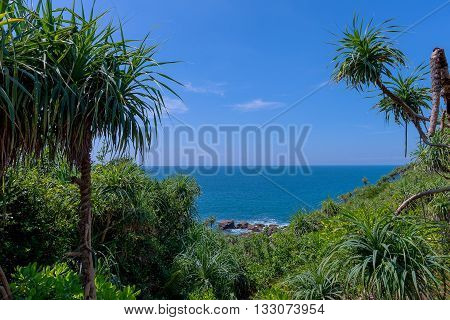 Nature Landscape Background. Scenic View Of Beautiful Paradise Island Coast With Green Cliffs, Waves On Sea And Clear Blue Sky Over Ocean Horizon. Tropical Seascape Scenery, Coastline. Summer Trave. Sri Lanka
