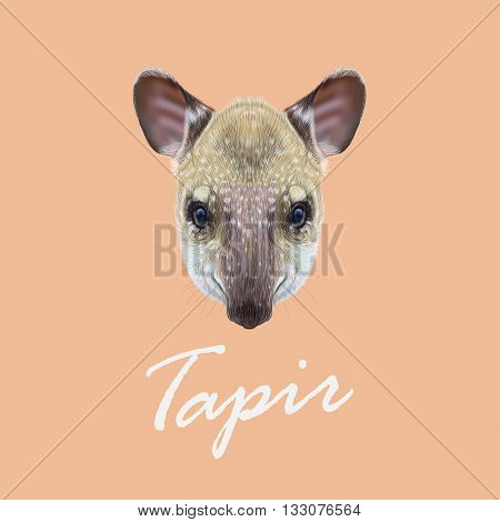 Vector Illustrated Portrait of Tapir. Cute face of young wild Tapir on pink background.