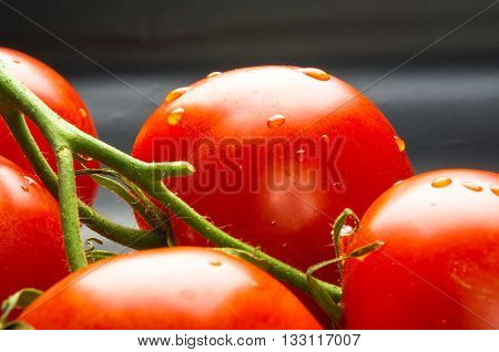 stilllife - tomatoes on twig, cucumbers, lettuce and cilantro on a wooden Board
