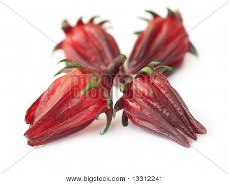 Hibiscus sabdariffa or roselle fruits over white background poster