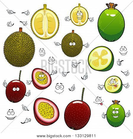 Southeast asian exotic fruits cartoon characters of whole and halves green feijoa, purple passionfruit and spiny durian with happy faces. Tropical cocktail menu or vegetarian dessert recipe design