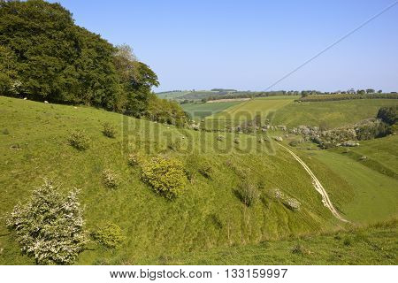 Yorkshire Wolds Countryside