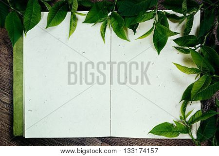Green leaves on blank sketchbook. Frame green leaves. The resentation. The blank notebook. Spring time blank notebook. Background.