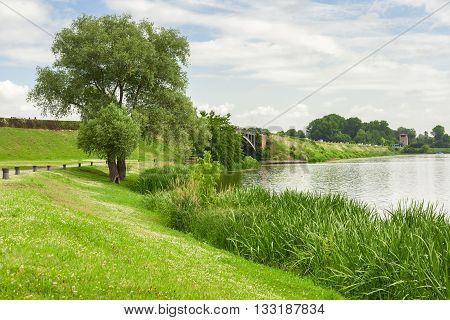 Mantua Lake View