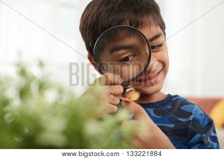 Smiling child looking at butterfly through magnifying glass