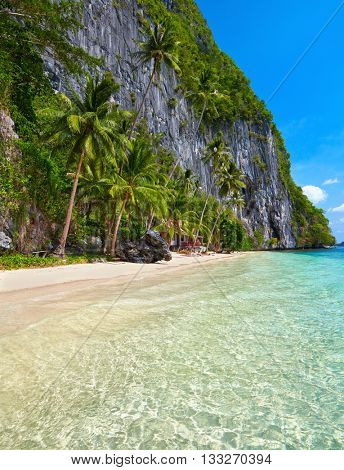 Beautiful island. Blue bay and palm trees. El Nido, Palawan, Philippines