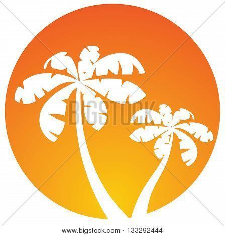 Palm trees. Vector orange icon isolated on white
