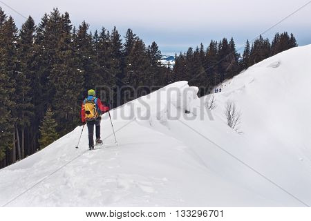 Cross country skier or person in snowshoes using poles to safely traverse a steep snow-covered mountain slope above the tree line in alpine scenery